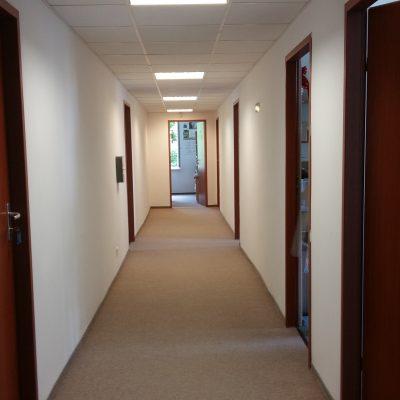 Lokale biurowe w module lub pojedyncze pokoje biurowe, Śródmieście